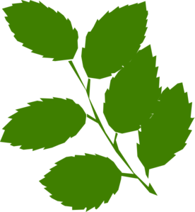 Clipart green leaves royalty free download Green Leaves Clip Art at Clker.com - vector clip art online, royalty ... royalty free download