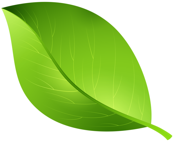 Clipart green leaves png library library leaves Green leaf transparent clip art image gallery yopriceville ... png library library