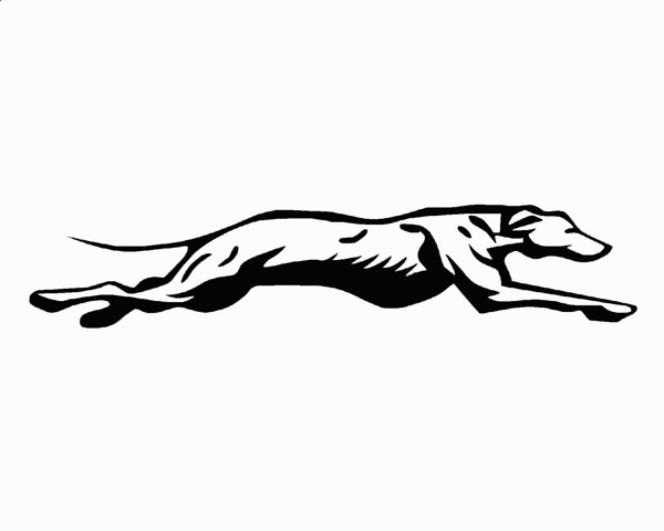 Clipart greyhound png transparent library Download greyhound mascot clipart Greyhound Lines Clip art png transparent library