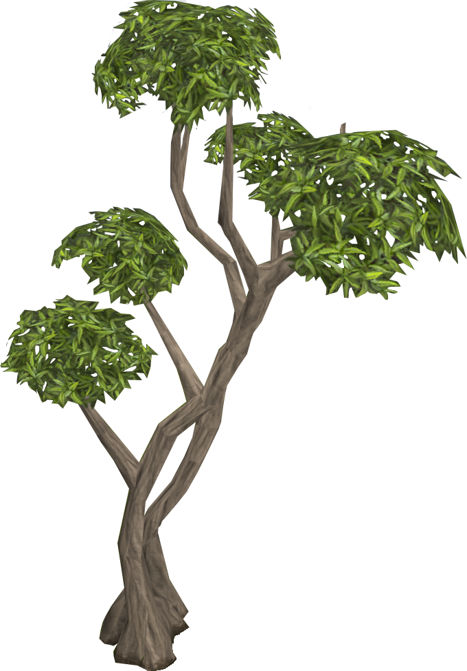 Clipart gum tree clip art library Trees | RuneScape Wiki | FANDOM powered by Wikia clip art library