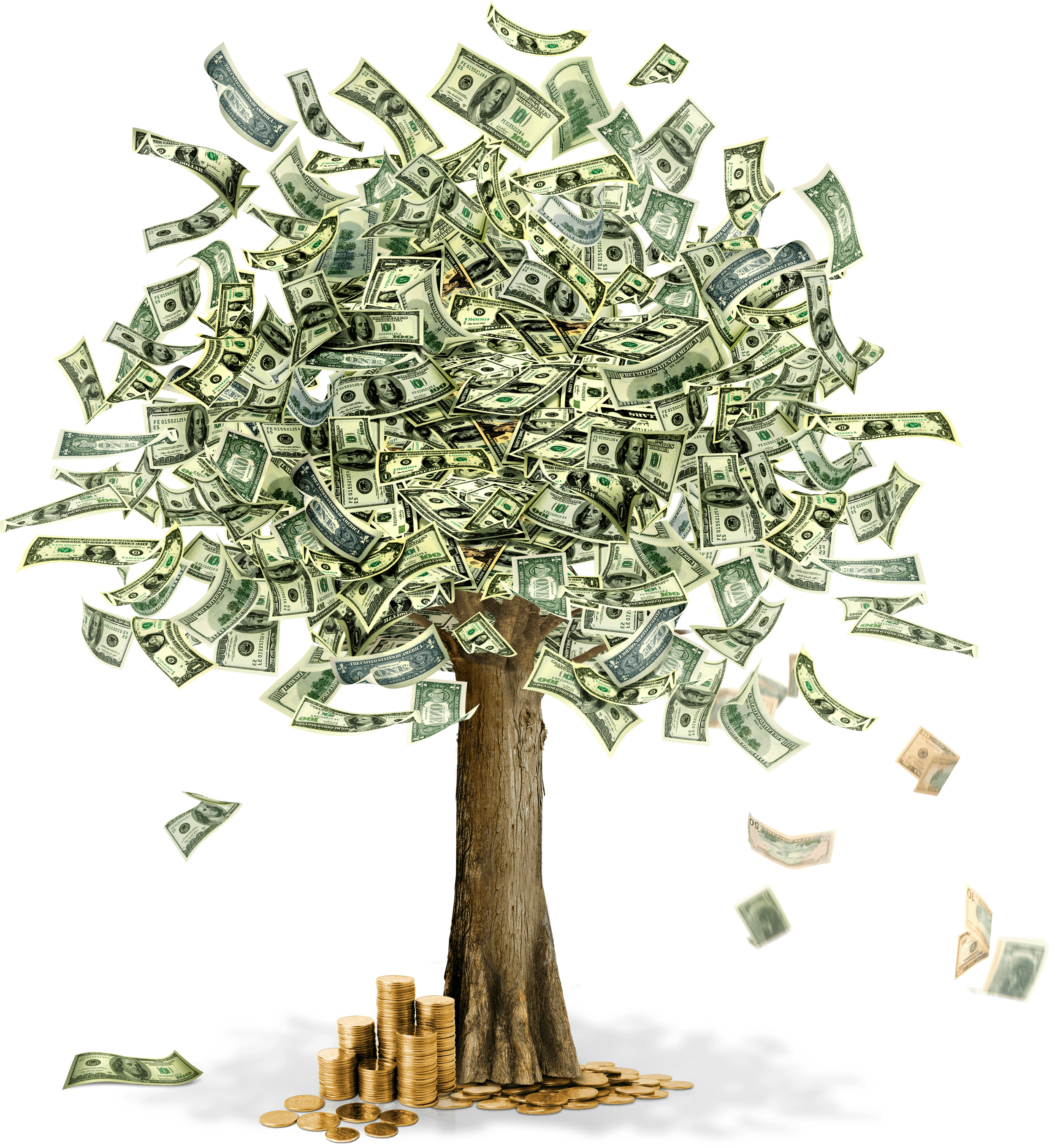 Clipart gum tree graphic free library Money Tree transparent PNG - StickPNG graphic free library