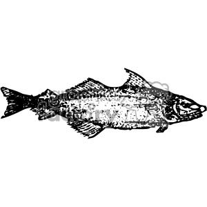 Clipart haddock jpg transparent vintage distressed haddock fish GF vector design vintage 1900 vector ... jpg transparent