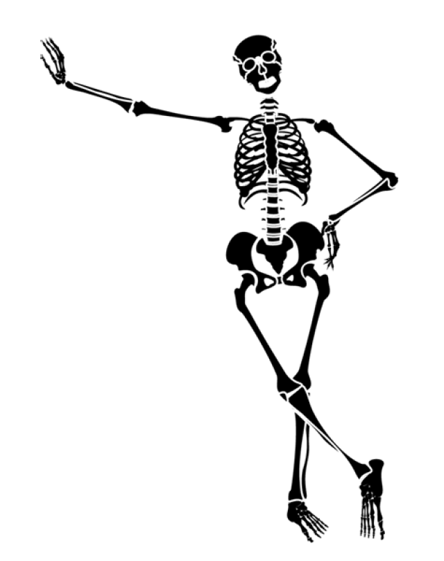 Cute halloween skeleton clipart.  collection of dancing