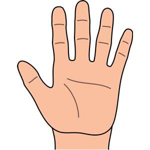 Hand clipart picture vector 70+ Clipart Hand | ClipartLook vector