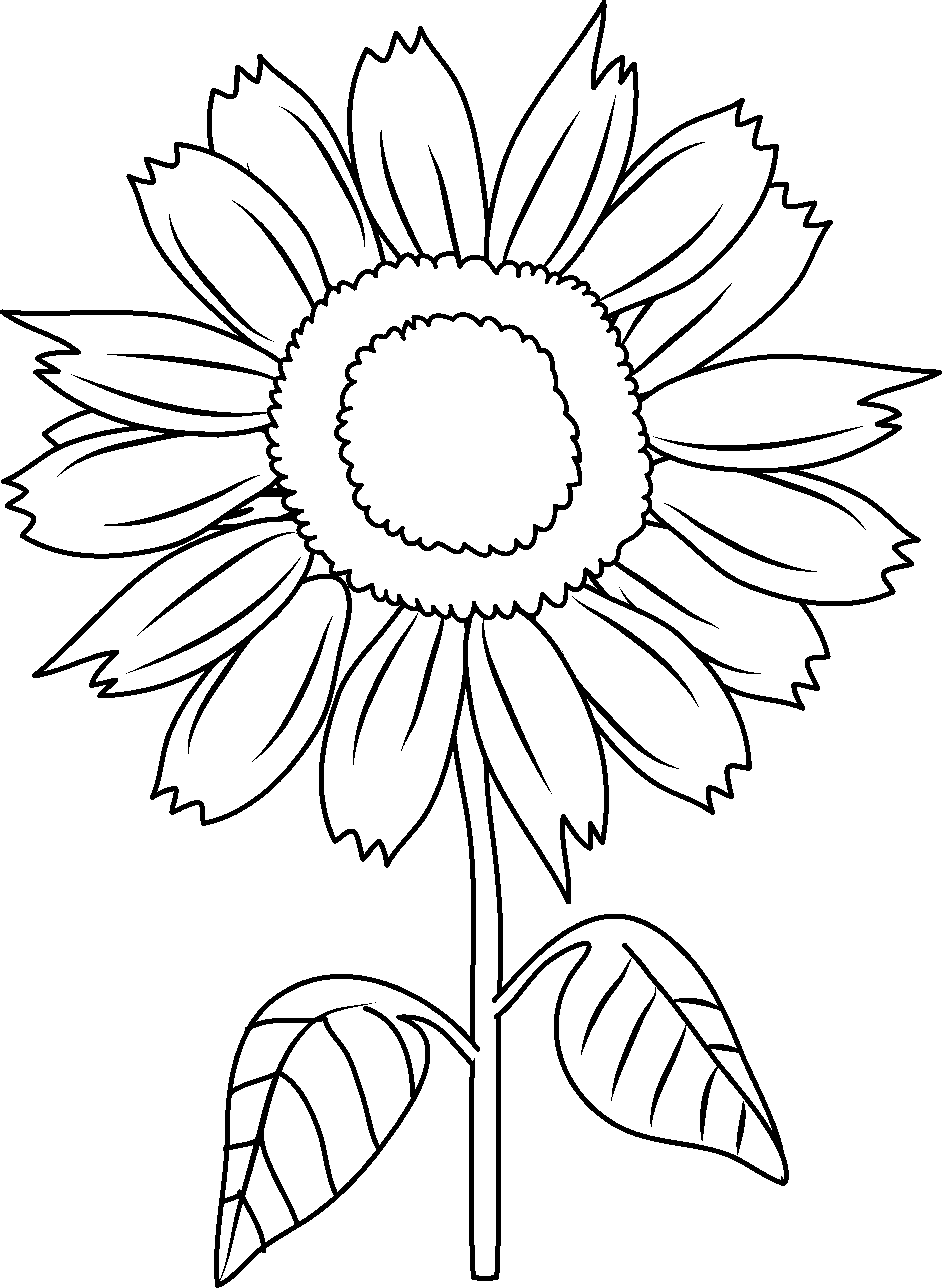 Free color book clipart sunflower image transparent Sunflower Black And White Drawing at GetDrawings.com | Free for ... image transparent