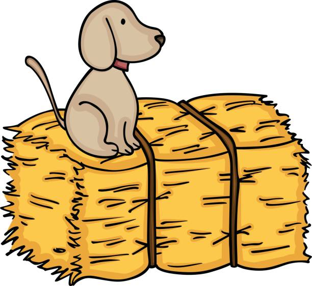 Free clipart hay image royalty free library Hay Bale Drawing | Free download best Hay Bale Drawing on ClipArtMag.com image royalty free library
