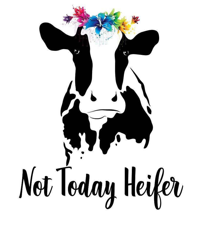 Clipart heifer