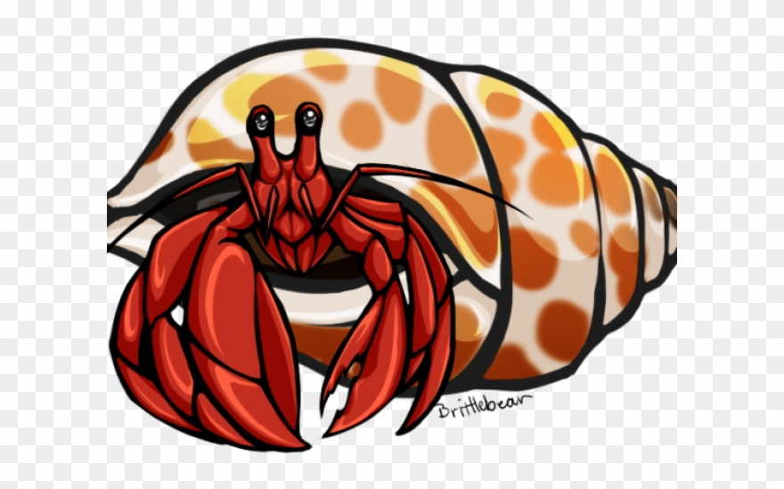 Clipart hermit crab picture library stock Crab Clipart Carson Dellosa - Clip Art Hermit Crab - Png Download ... picture library stock