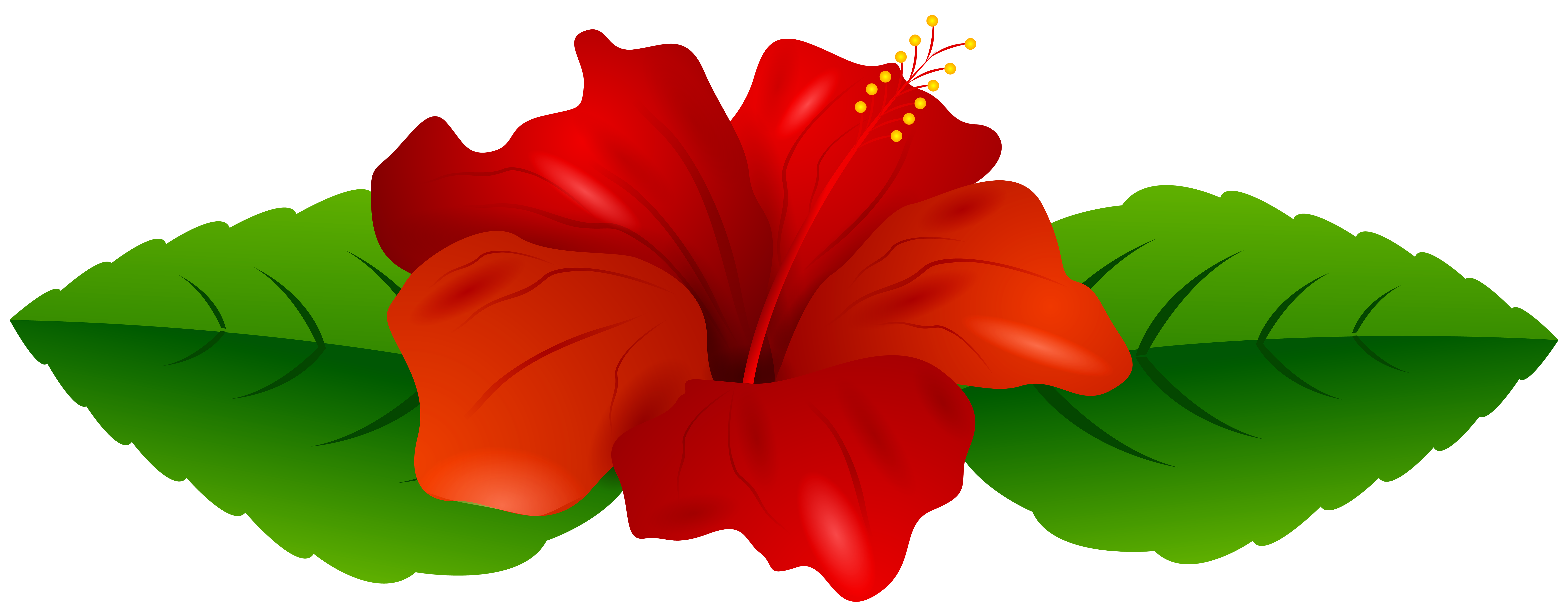 Free hibiscus flower clipart clip royalty free download Red Hibiscus Transparent PNG Clip Art Image | Gallery Yopriceville ... clip royalty free download