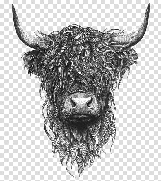 Highlands clipart