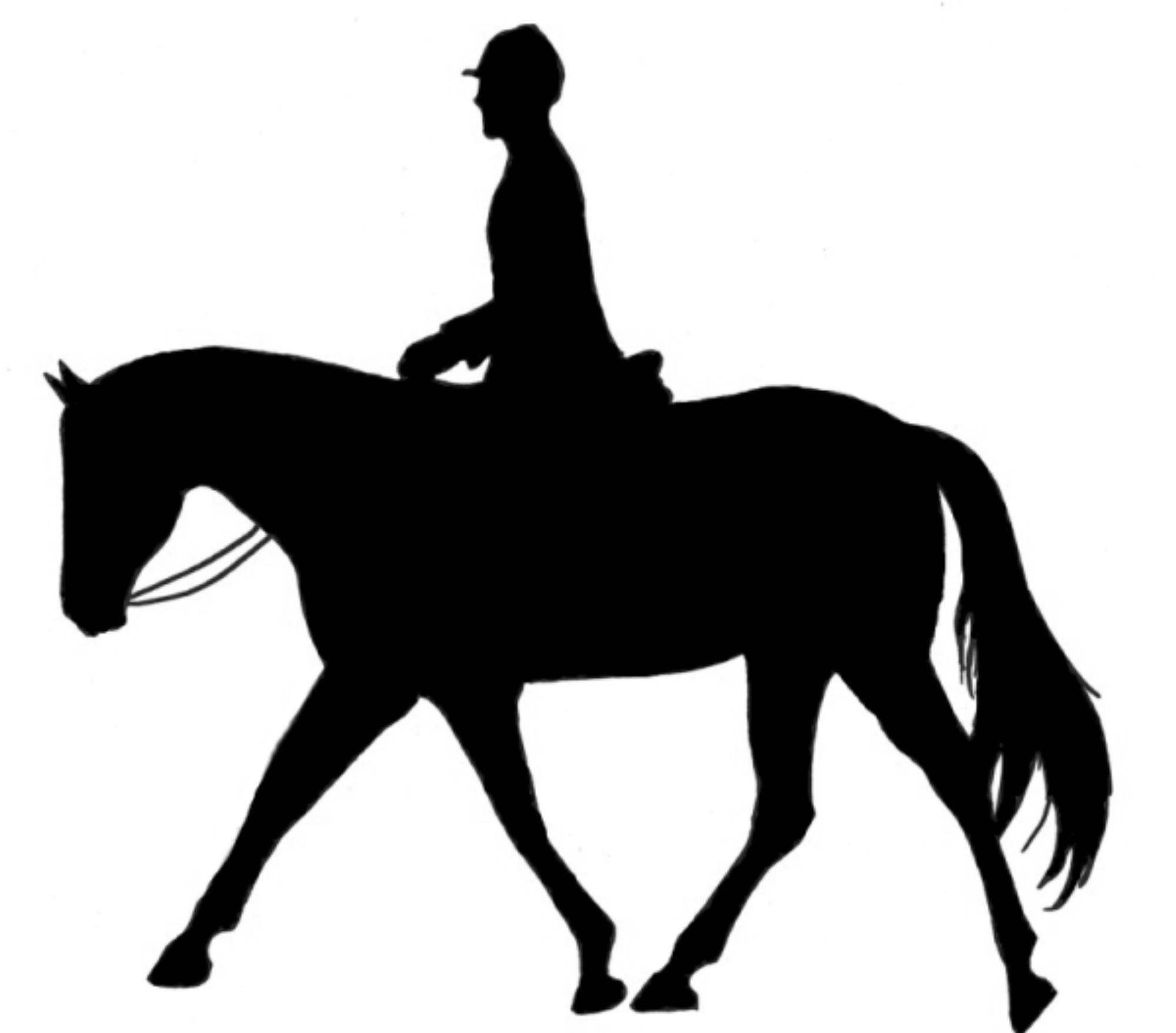 Clipart horseriding clip art royalty free stock Best Horse Riding Clipart #29031 - Clipartion.com clip art royalty free stock
