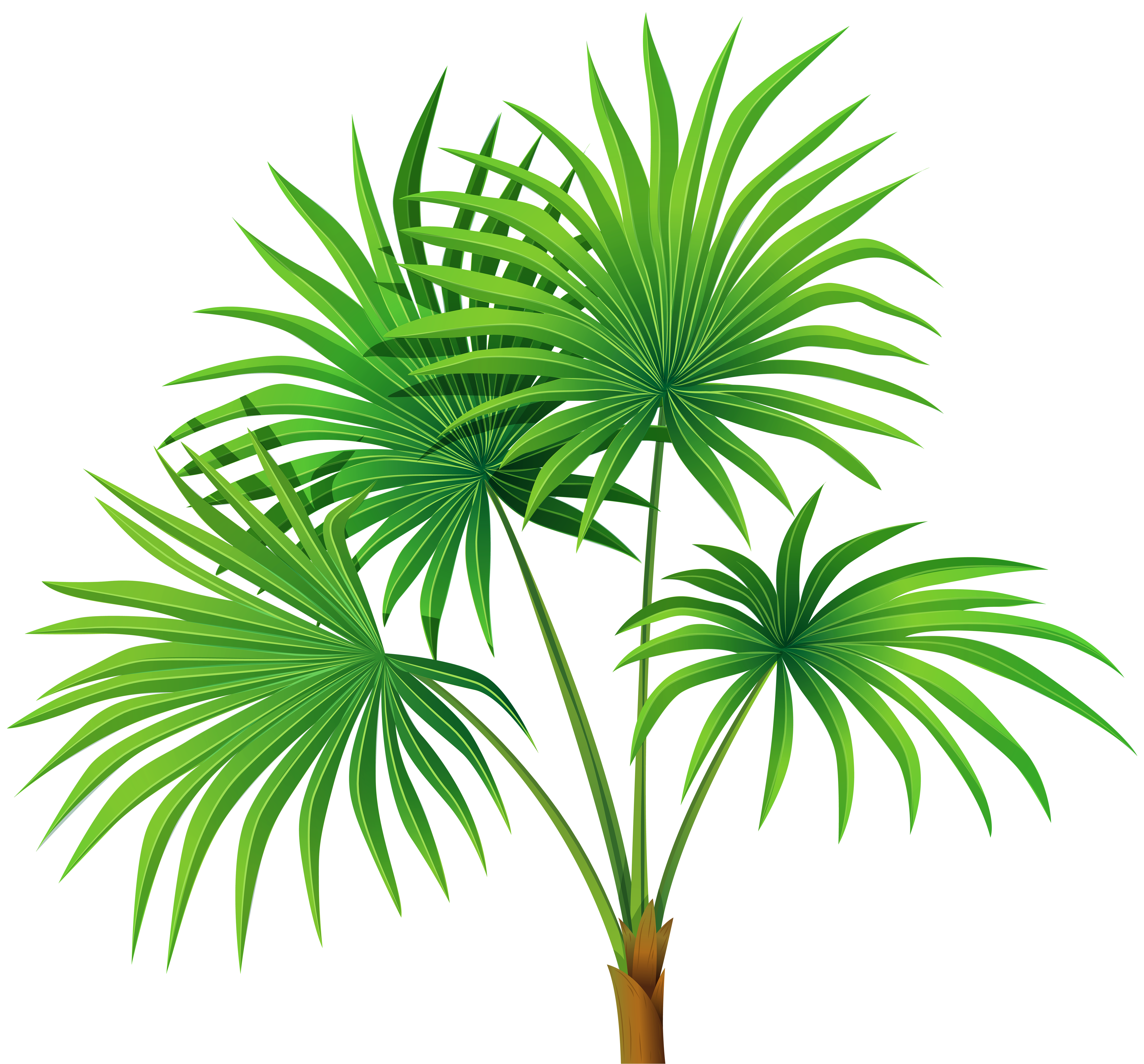 Clipart house plant png library download Palm Plant Transparent PNG Clip Art   Gallery Yopriceville - High ... png library download