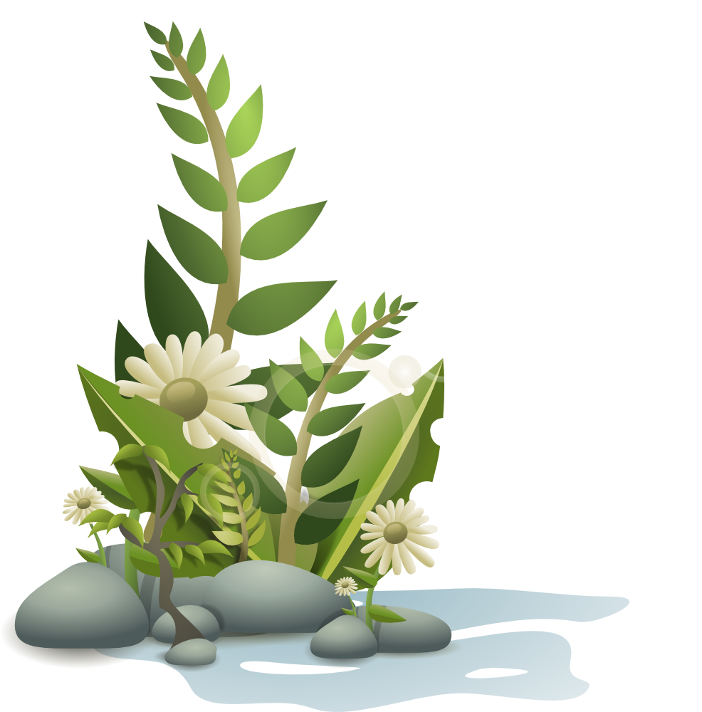 Passion flower clipart black and white stock OnlineLabels Clip Art - Plants Pebbles And Flowers black and white stock