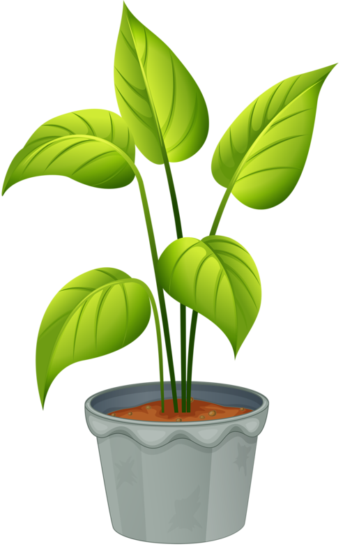 House plant clipart graphic royalty free library green home plant | ✿° my garden valley ° ✿ | Pinterest | Plants ... graphic royalty free library