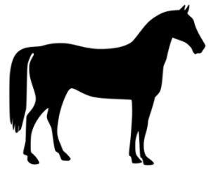 Horse clipart pic clip art free stock FREE Horse and Pony Clip Art - ClipArt Best - ClipArt Best ... clip art free stock