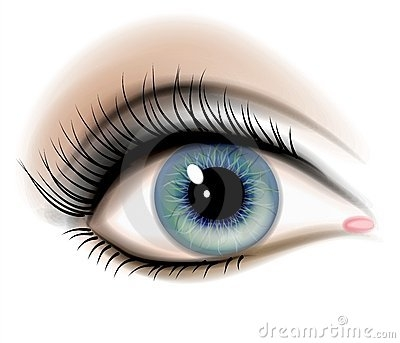 Clipart human eye download Free Human Eye Cliparts, Download Free Clip Art, Free Clip Art on ... download