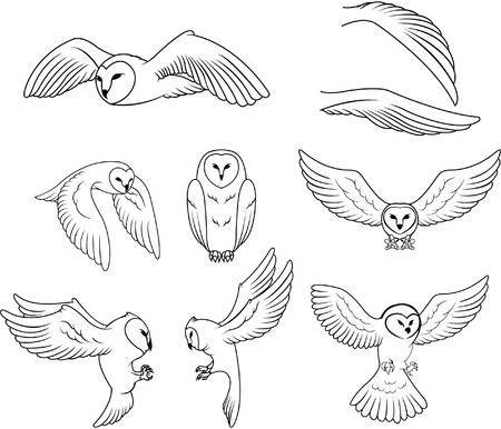 Clipart images of a barn owl vector library Barn owl clipart 6 » Clipart Portal vector library