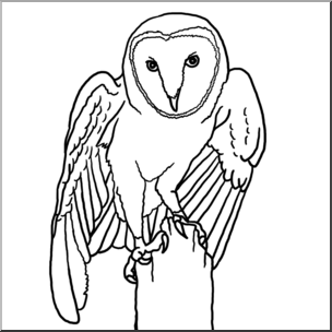 Clipart images of a barn owl image freeuse Clip Art: Barn Owl B&W I abcteach.com | abcteach image freeuse