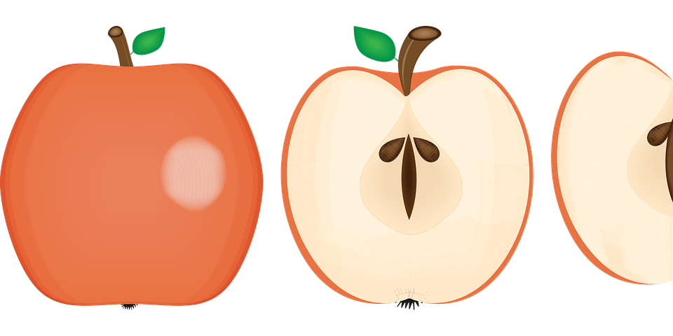 Clipart images of apple cores clip art library Do apple seeds really contain cyanide? clip art library