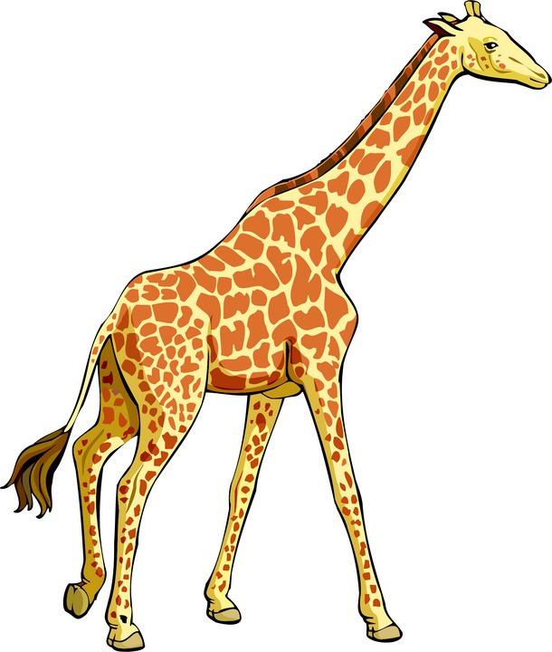 Girrafe clipart clip free Free Free Giraffe Clipart, Download Free Clip Art, Free Clip Art on ... clip free