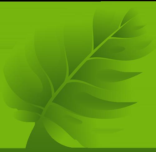 Leaaf clipart clip transparent library Leaf Clipart | Tropical | Leaf stencil, Leaf clipart, Leaf template clip transparent library