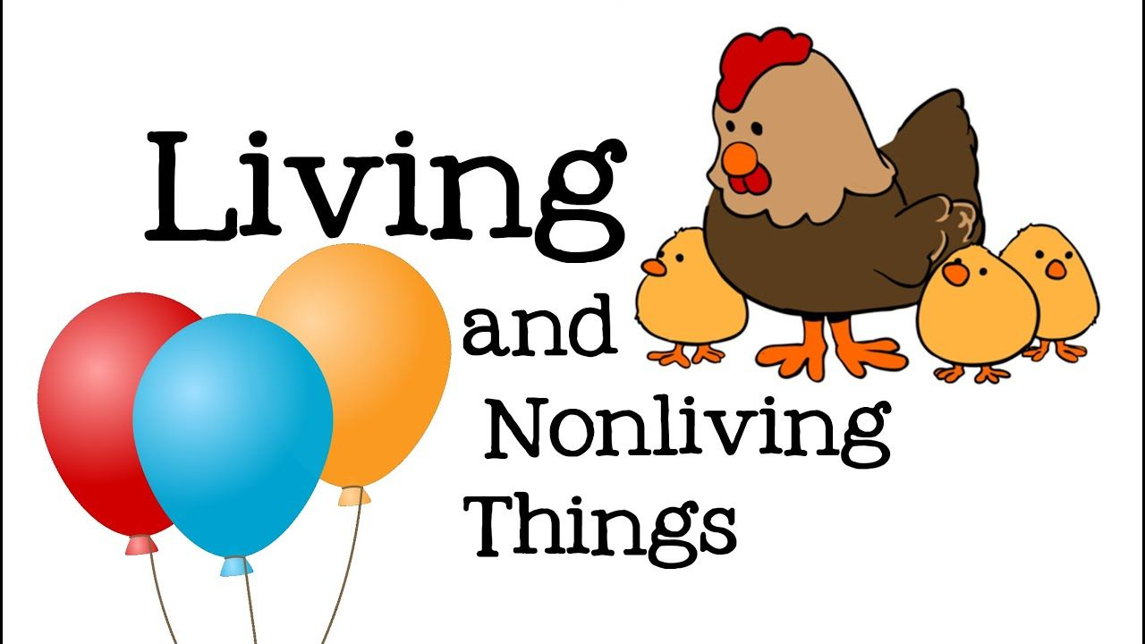 Clipart images of living and nonliving things jpg freeuse stock Living and Nonliving Things for Kids: Life Science for Children ... jpg freeuse stock