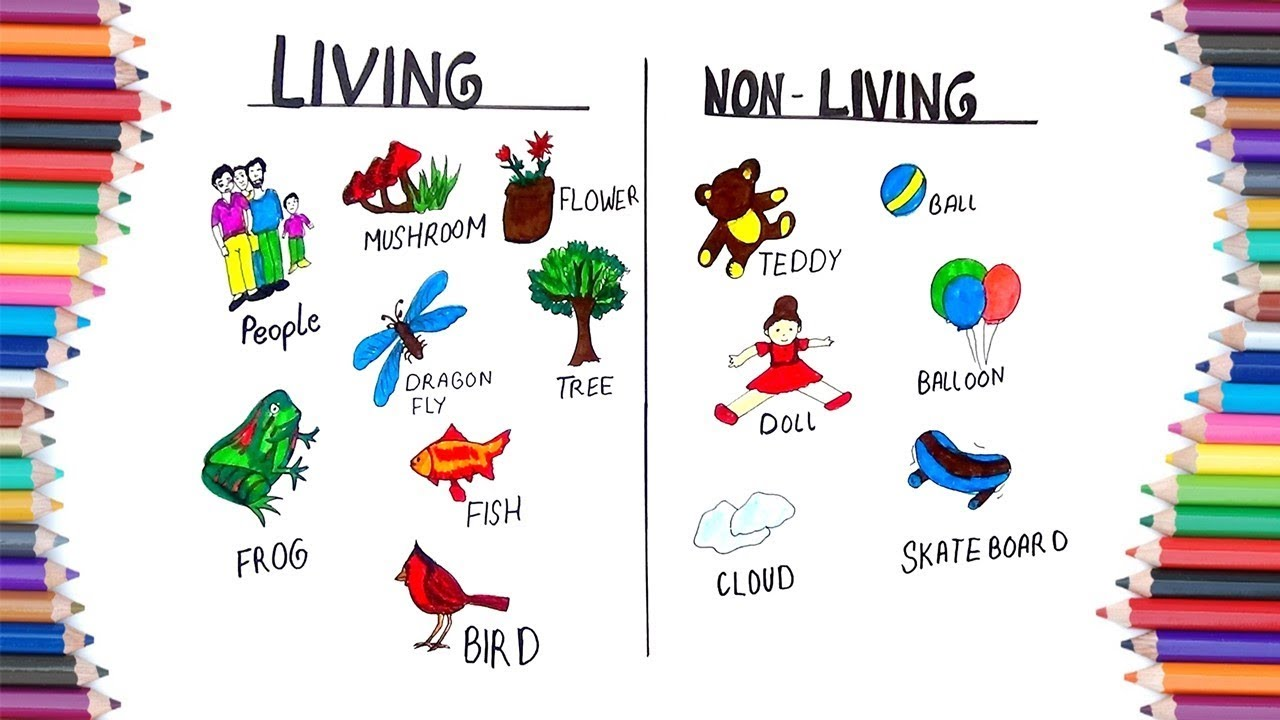 Clipart images of living and nonliving things svg black and white HOW TO DRAW LIVING AND NON LIVING FOR KIDS svg black and white