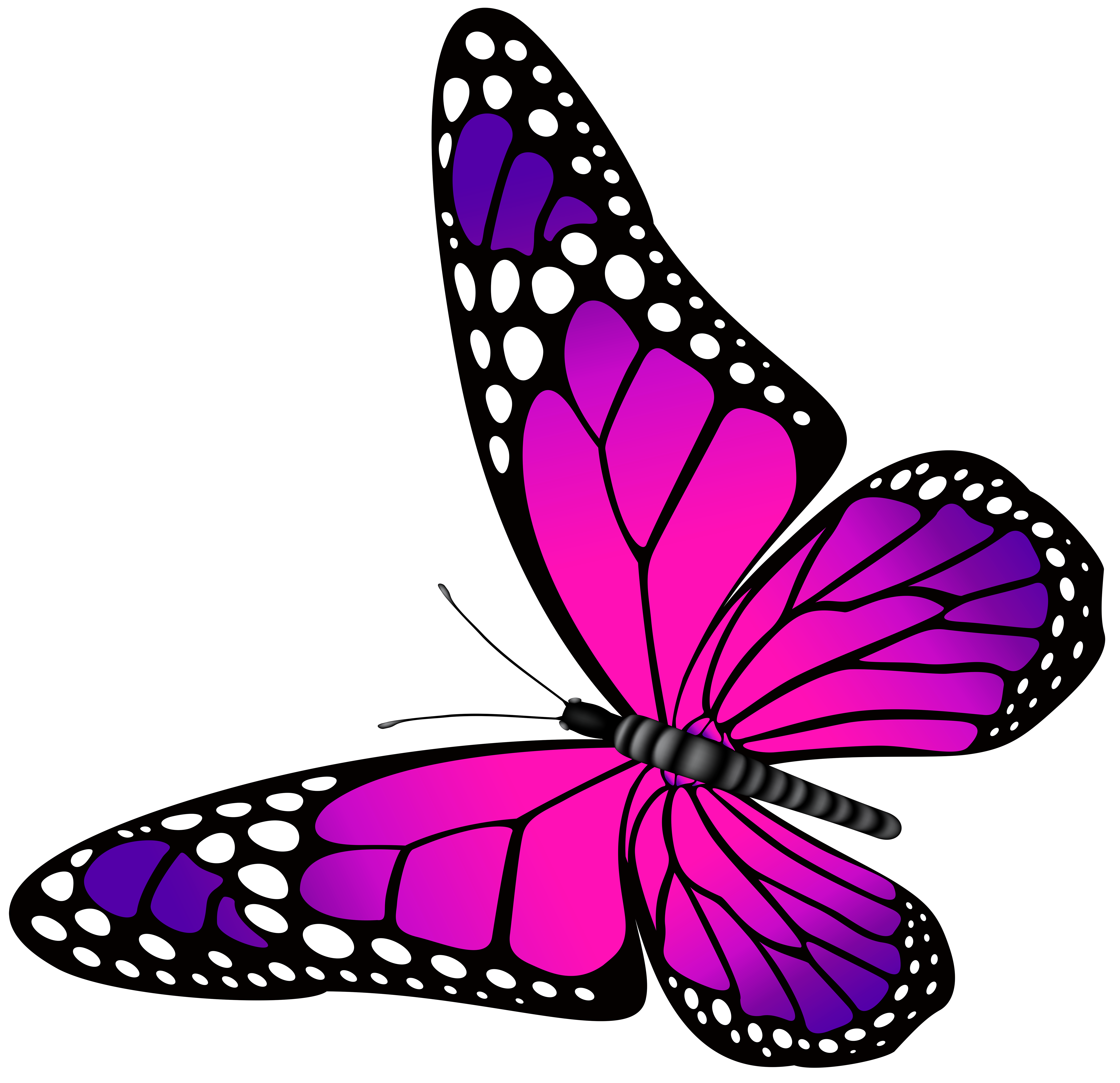 Clipart images of thanksgiving butterflies clip art freeuse download Butterfly Clipart For Kids at GetDrawings.com | Free for personal ... clip art freeuse download