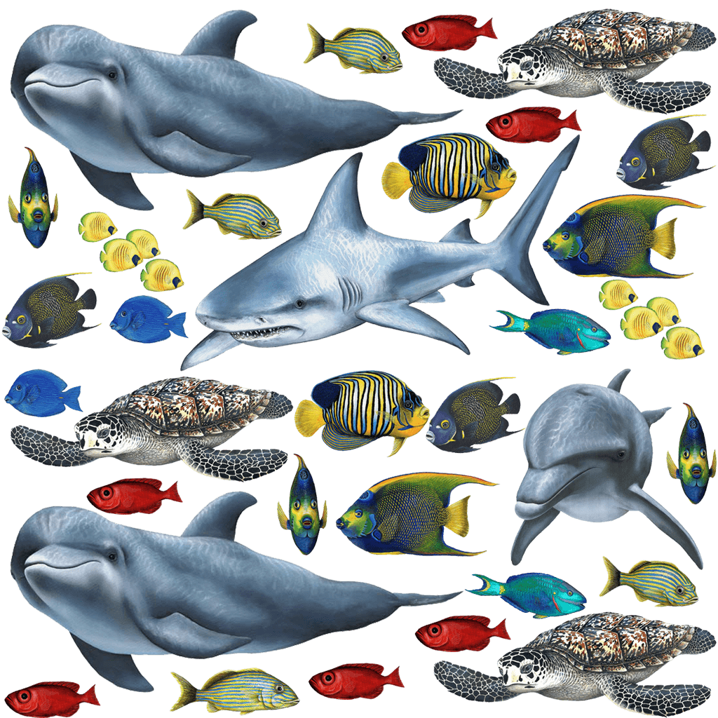 Clipart images of tropical fish stock Tropical Fish and Sea Creatures Sticker Collection - Wall Mural Decals stock