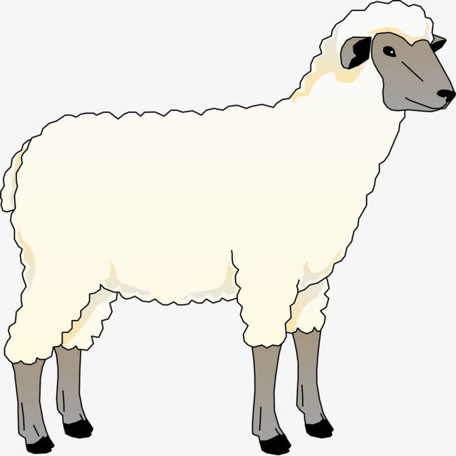 Clipart immature freeuse library young sheep | Needle Felting | Sheep illustration, Sheep outline ... freeuse library