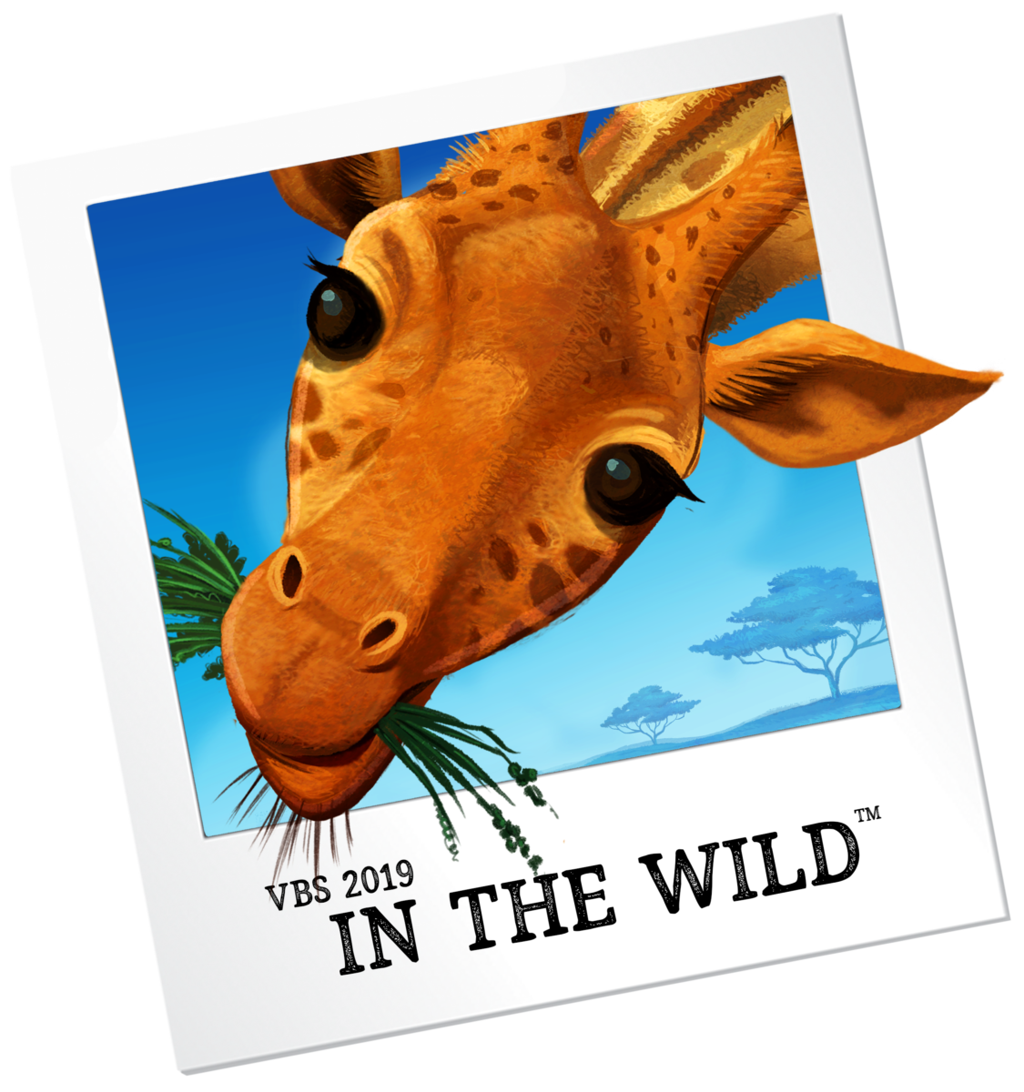 Into the wild vbs clipart jpg royalty free library VBS | Vacation Bible School | LifeWay\'s VBS 2019 is … | LifeWay VBS 2019 jpg royalty free library