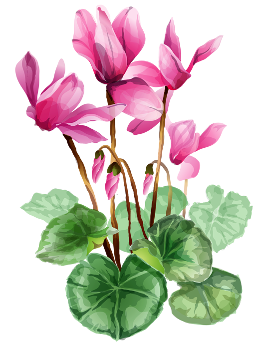 Iris Flower Clip Art Free | Clipart Panda - Free Clipart Images graphic royalty free