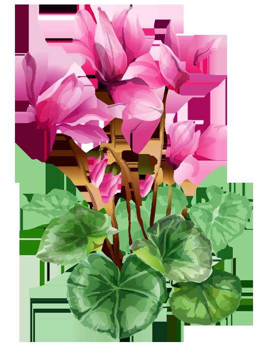 Iris flower clipart image library Iris Flower Clip Art Free | Clipart Panda - Free Clipart Images image library