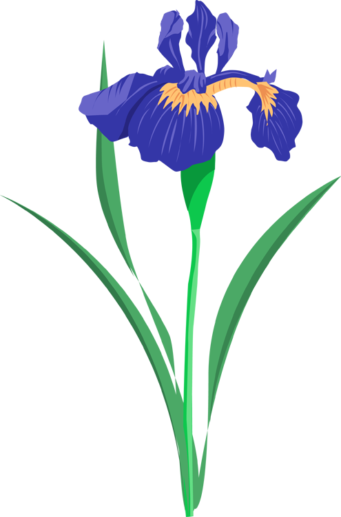 Clipart iris flower graphic stock Pontiac's Rebellion: An Overview | Pinterest | Purple iris, Clip art ... graphic stock