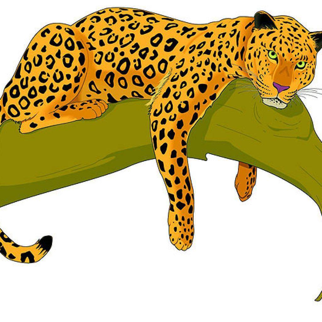 Jaguar clipart png freeuse stock Jaguars clipart 6 » Clipart Station png freeuse stock