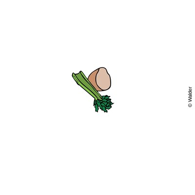 Clipart karpas picture royalty free library Karpas (Vegetables) | Walder Education picture royalty free library