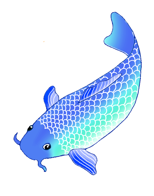 Clipart koi fish png transparent download Colorful Koi Fish Drawings png transparent download