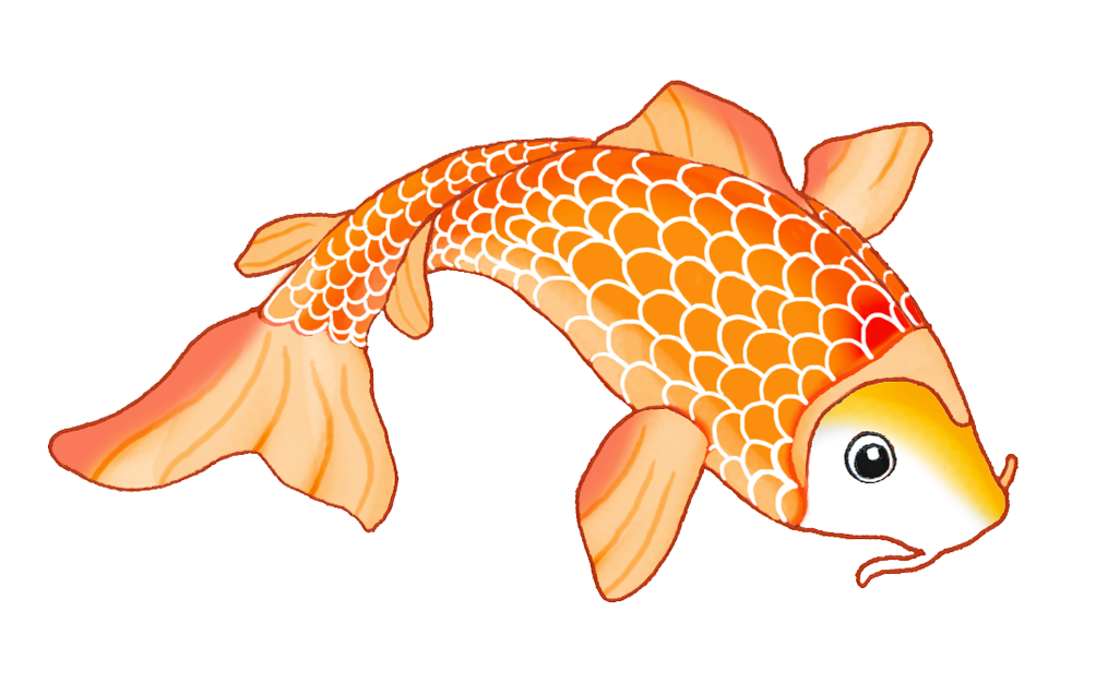 Clipart koi fish jpg freeuse download Koi Siamese fighting fish Drawing Clip art - koi 1004*637 transprent ... jpg freeuse download