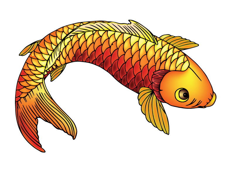 Clipart koi fish graphic transparent library Koi-Fish-Live-Trace by heckardkyle on DeviantArt graphic transparent library