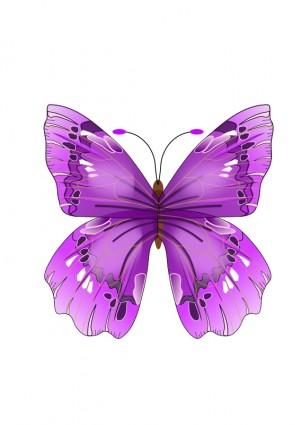 Clipart kostenlos schmetterling jpg free stock Schmetterling-Vektor-ClipArt-Kostenlose Vector Kostenloser Download jpg free stock