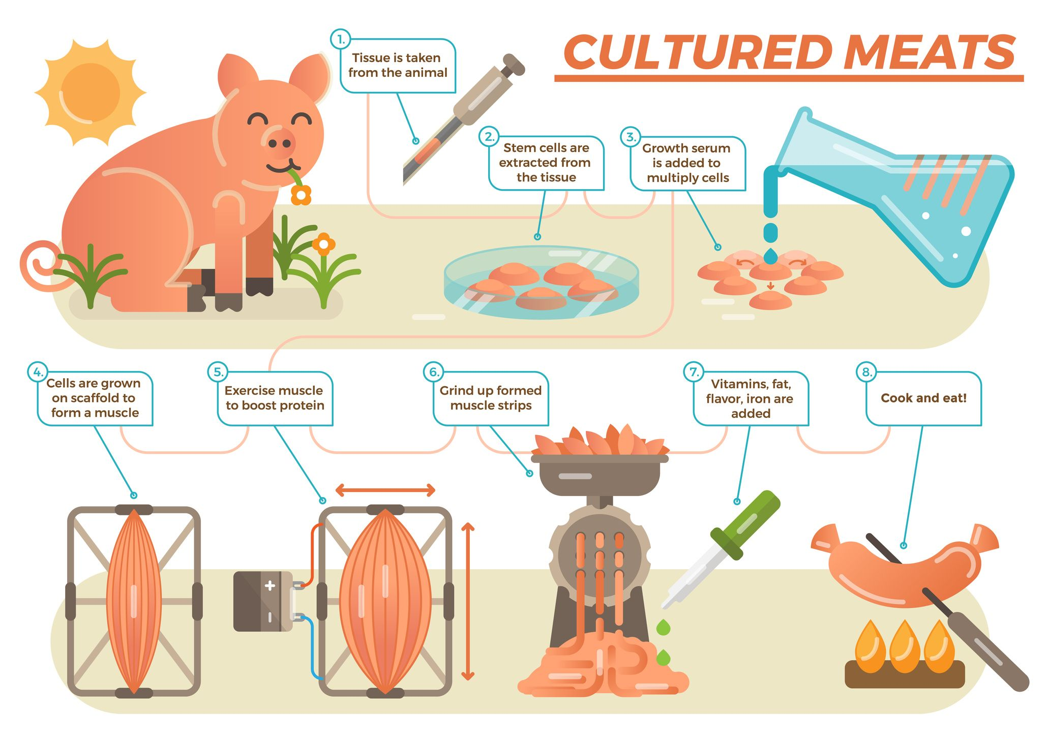 Clipart lab grown meat vector royalty free stock The Clean Meat Revolution Is Coming | Opinion vector royalty free stock