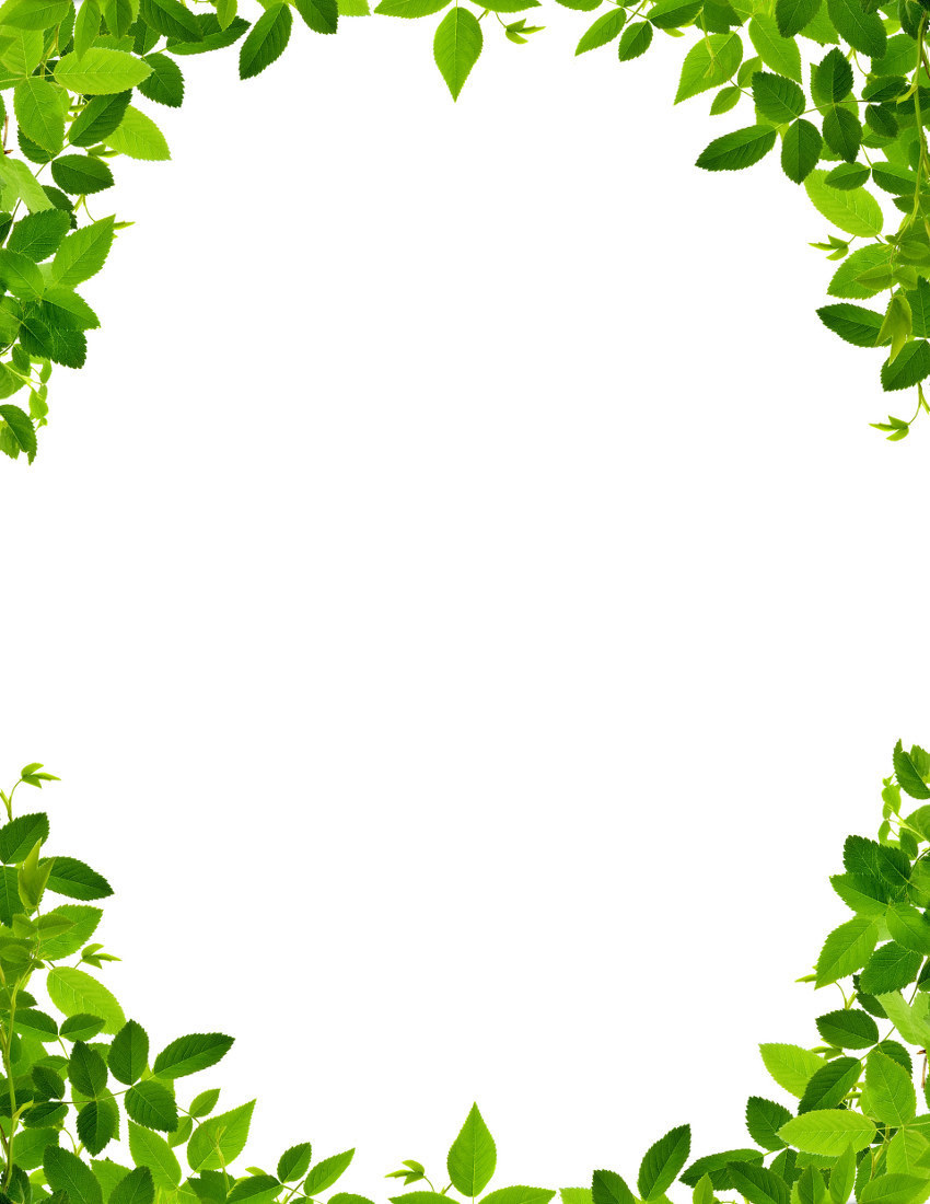 Nature frame clipart