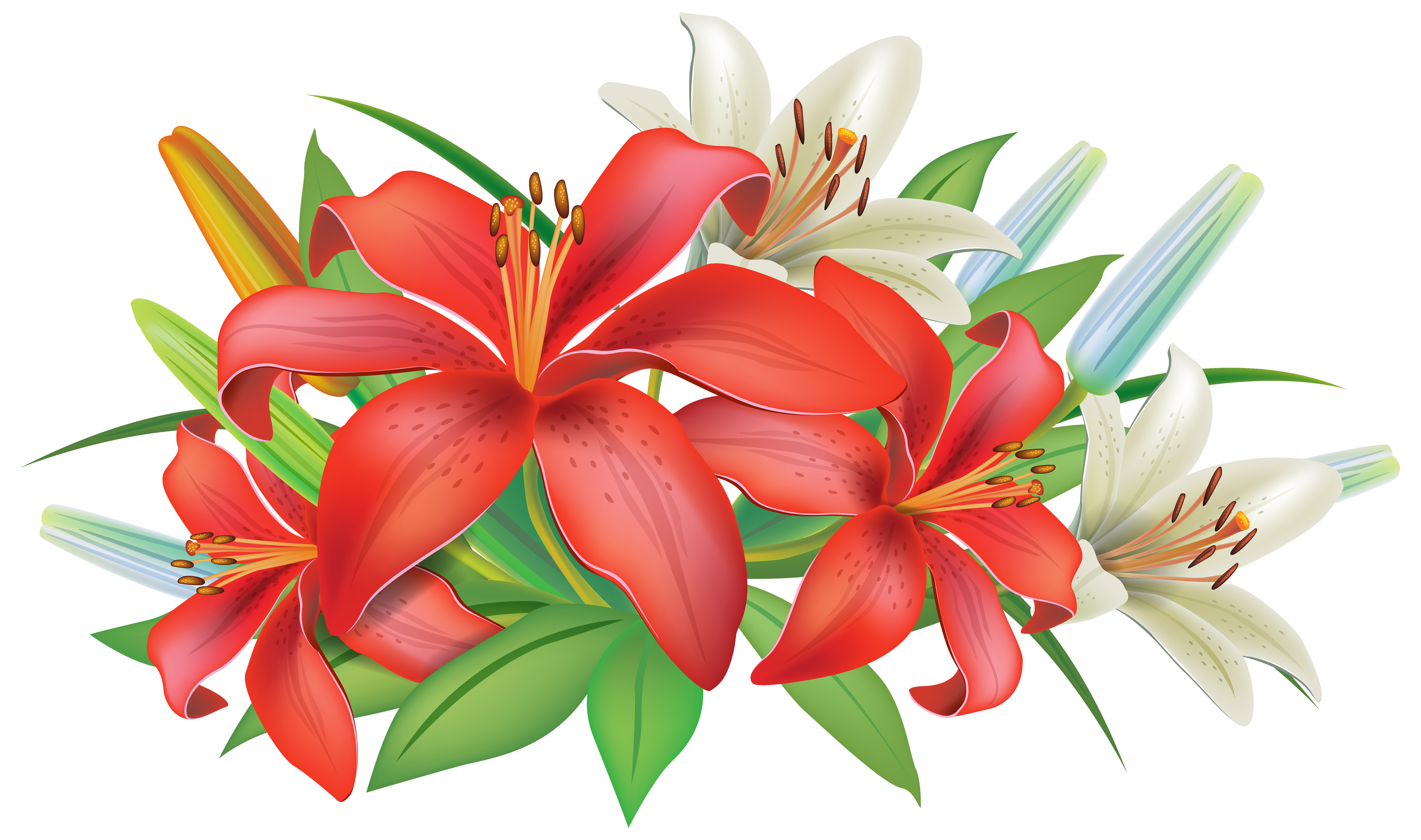 Lily flower clipart clip art royalty free download Red Lilies Flowers Decoration PNG Clipart Image | flowers ... clip art royalty free download