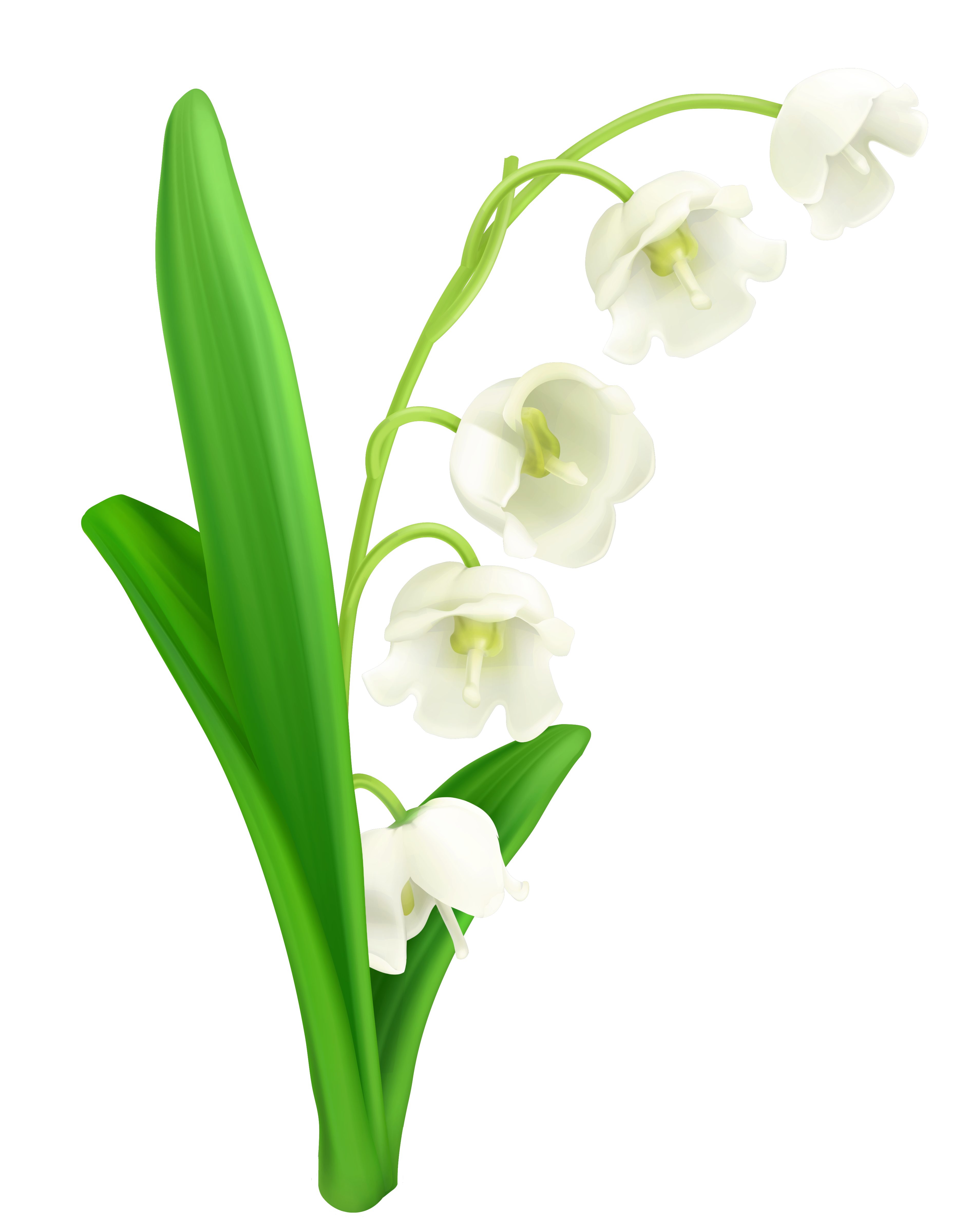 Valley with flowers clipart