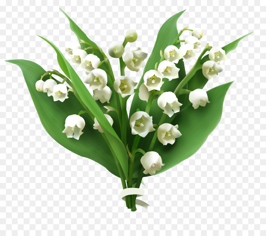 Lilly of the valley clipart image free library Lily Flower Cartoon clipart - Flower, Plant, transparent clip art image free library