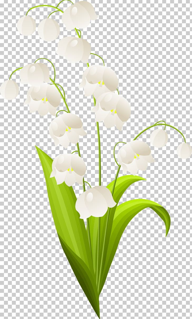 Valley with flowers clipart clip free Lily Of The Valley Flower PNG, Clipart, Art, Clip Art, Cut Flowers ... clip free