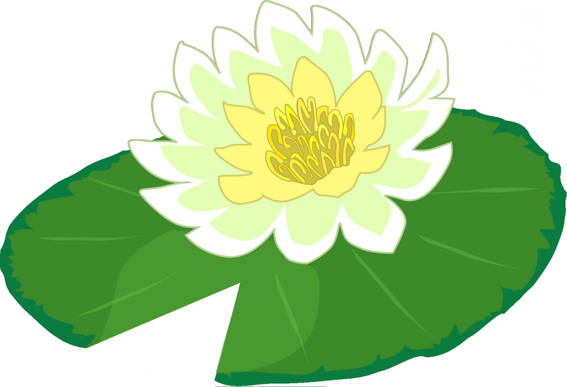 Lily pads clipart banner stock Lily Pad Vector | SOIDERGI banner stock