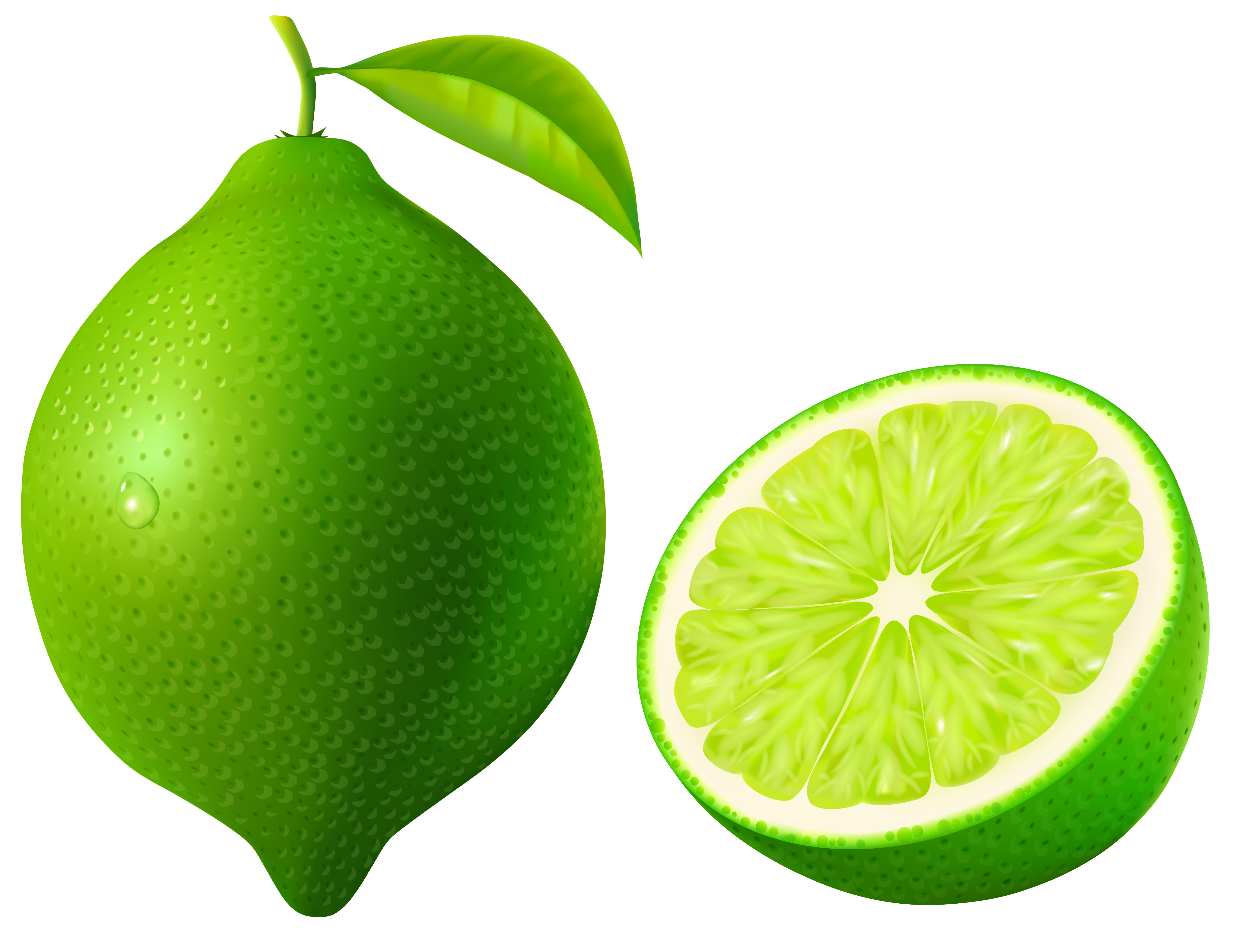 Clipart lime jpg download Green Lime PNG Vector Clipart Image | Gallery Yopriceville - High ... jpg download