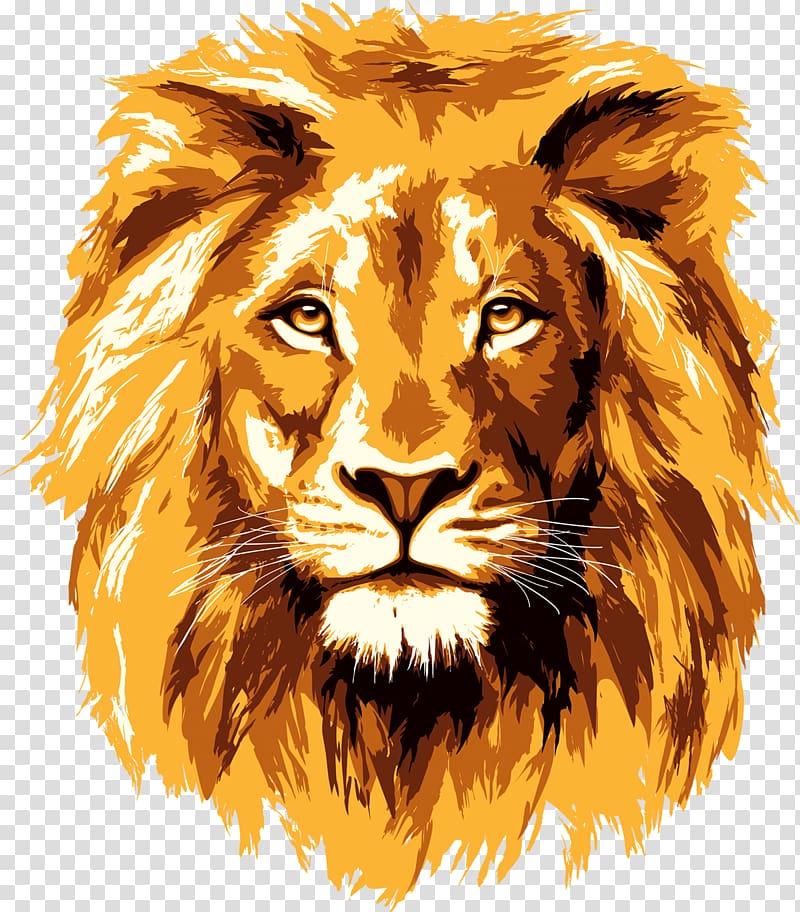 Clipart lion face jpg transparent download Yellow male lion illustration, Lionhead rabbit , lion face ... jpg transparent download