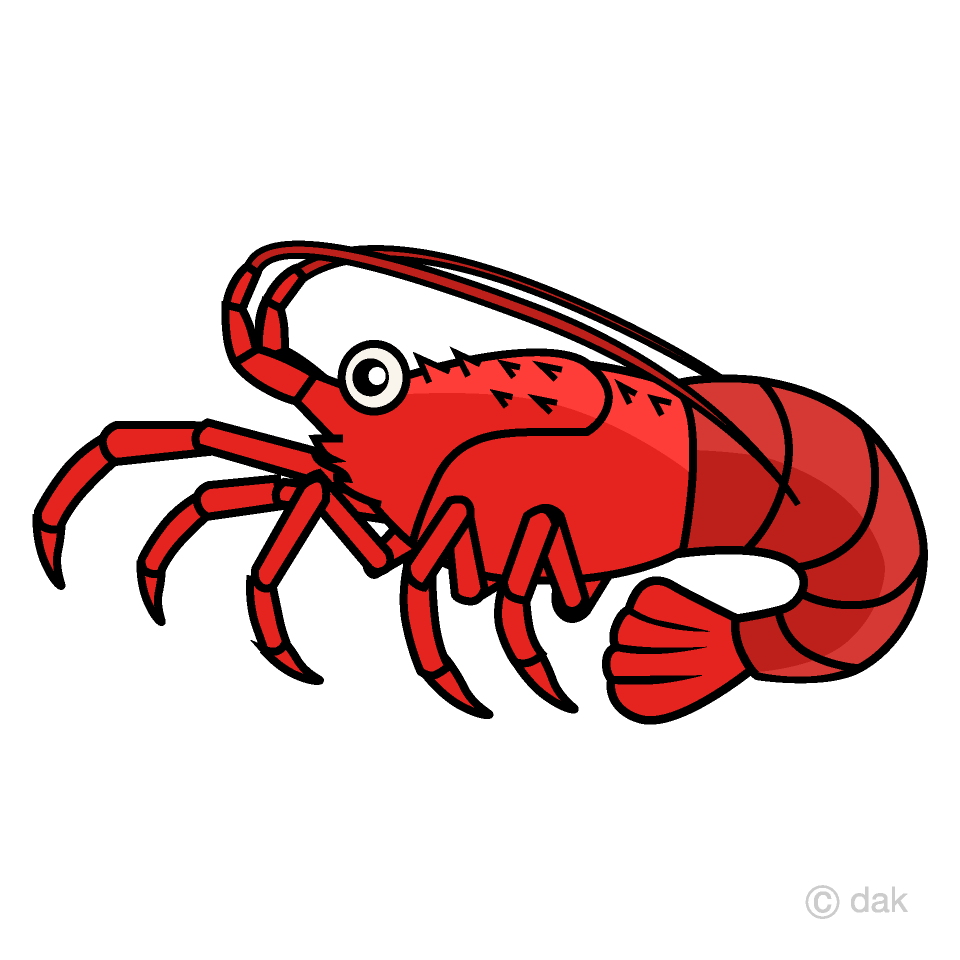 Clipart lobster graphic Spiny Lobster Clipart Free Picture|Illustoon graphic